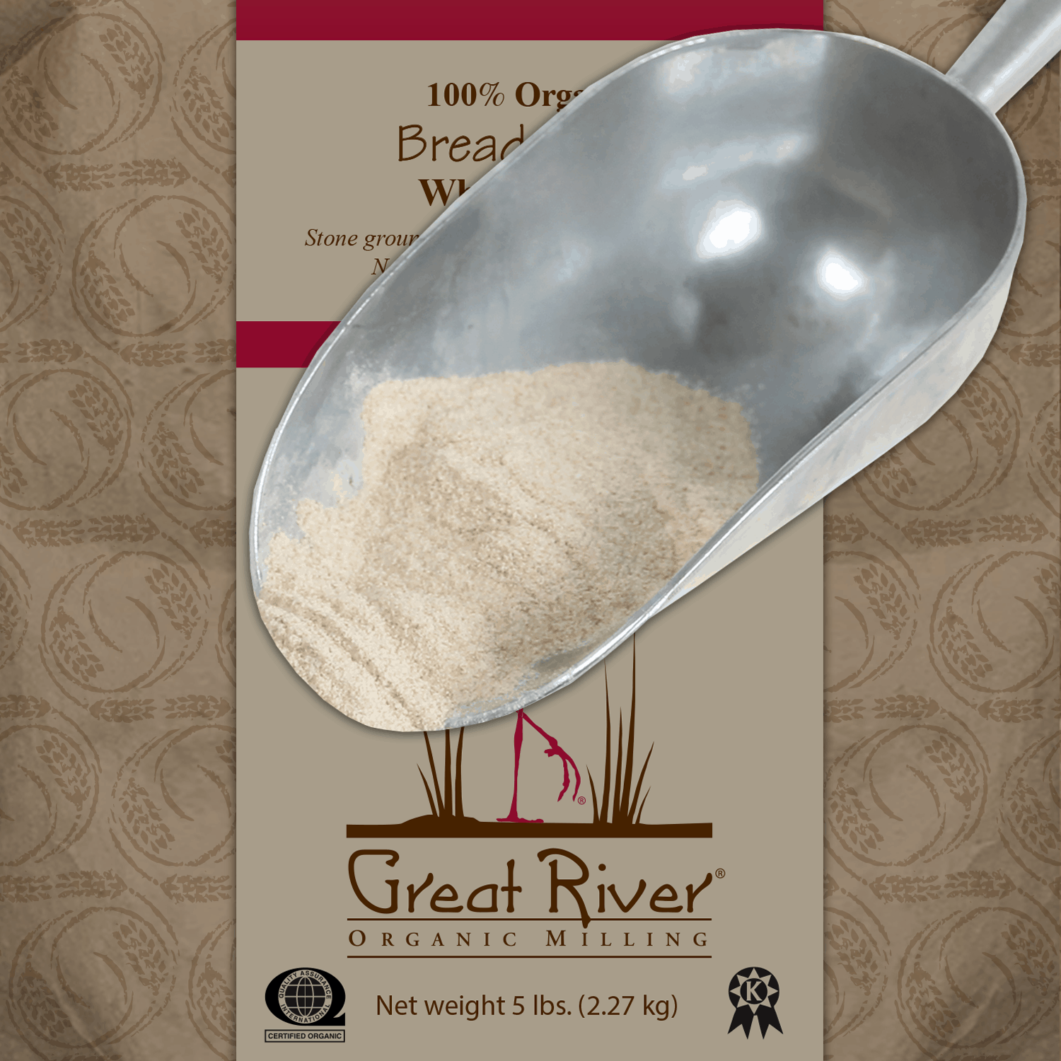 whole wheat bread flour scoop
