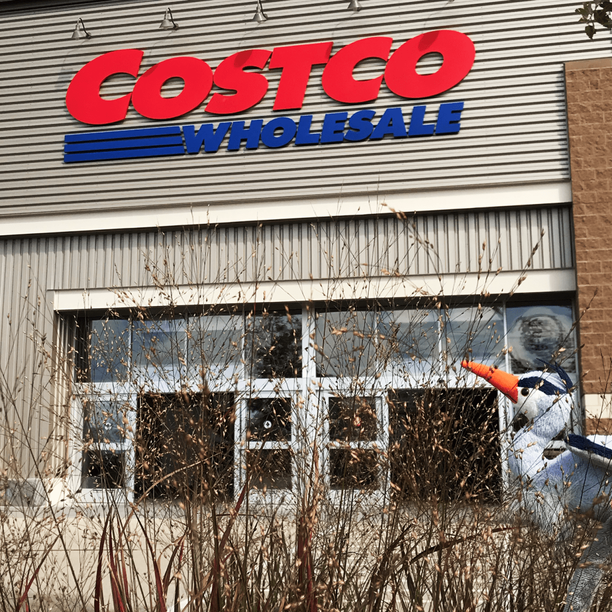 BG visits costco